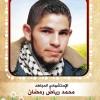 الاستشهادي : محمد رياض عبد المعطي رمضان